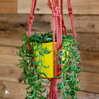 Taller: Plant hanger de macramé